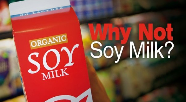 soy milk benefits and dangers of dating