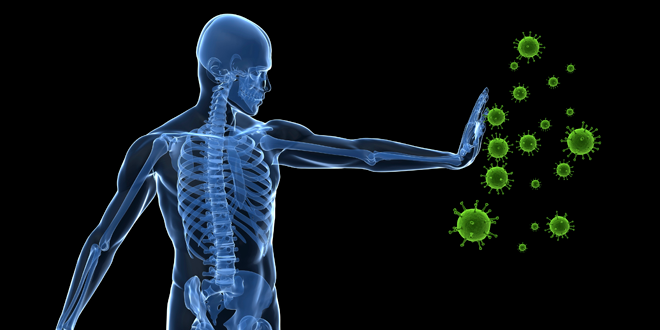 How to Boost Your Immune System (With Maximum Results & Minimal Hassle)