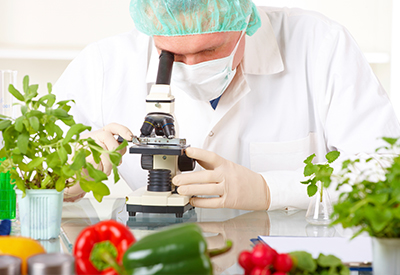 Vegetables and Fruits… That are Genetically Modified (GM)