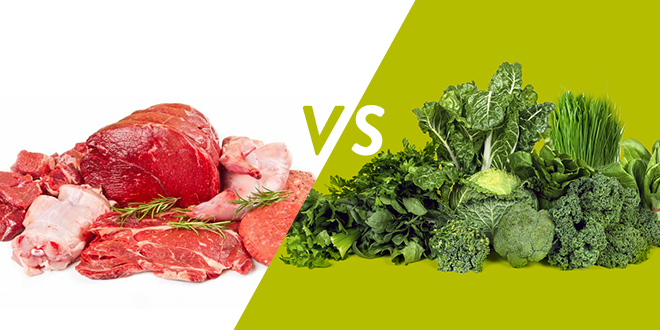 Plant Vs Animal Proteins How A Vegetarian Diet Crushes