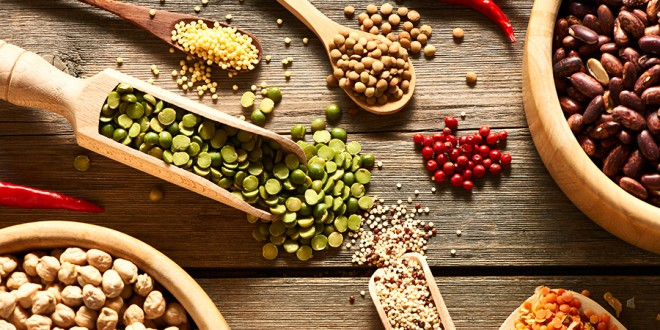 5 Healthy Plant Based Protein