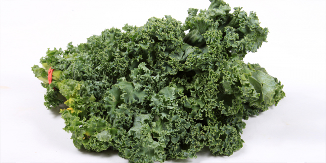Calcium Rich Food Sources of Your Raw Food Diet