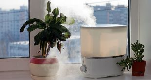 naturally-humidify-your-home-web