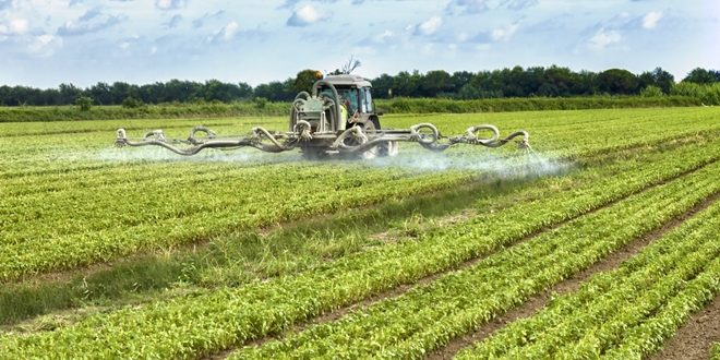 What these advocates of GMO's neglect to tell you, however, is that GM foods can cause unpredictable side effects to surface, such as allergies, diseases and nutritional problems.
