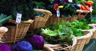 What makes some of the most beneficial leafy greens so rich and nutritious? Read on to learn more about your best options.