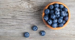 Discover the power of these bright and tiny berries.
