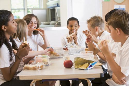 Obesity and academic performance are among the main concerns of poor nutrition in student lunches.