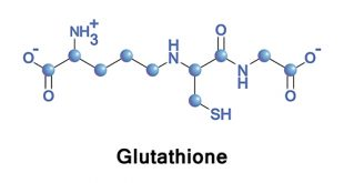 gluthathion molecular structure illustrated