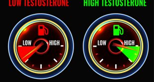 high vs low testosterone graphic