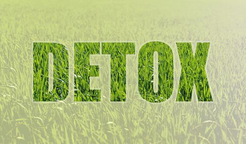 detox lettering with grass background