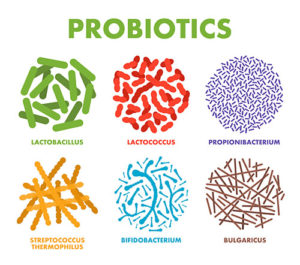 probiotics for human health